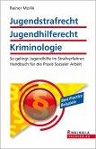 Jugendstrafrecht, Jugendhilferecht, Kriminologie (eBook, ePUB)