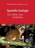 Spezielle Zoologie. Teil 2: Wirbel- oder Schädeltiere (eBook, PDF)