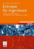 Entropie für Ingenieure (eBook, PDF)