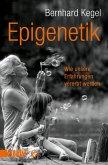 Epigenetik (eBook, ePUB)