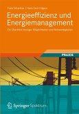 Energieeffizienz und Energiemanagement (eBook, PDF)
