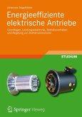 Energieeffiziente elektrische Antriebe (eBook, PDF)