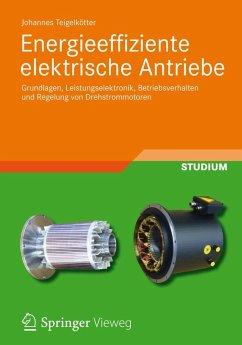 Energieeffiziente elektrische Antriebe (eBook, PDF) - Teigelkötter, Johannes