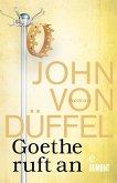 Goethe ruft an (eBook, ePUB)