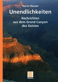 Unendlichkeiten (eBook, PDF)