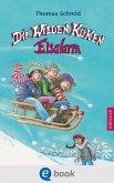 Eisalarm / Die Wilden Küken Bd.2 (eBook, ePUB)