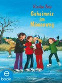 Geheimnis im Möwenweg / Möwenweg Bd.6 (eBook, ePUB)