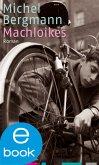 Machloikes / Teilacher Trilogie Bd.2 (eBook, ePUB)