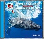 WAS IST WAS Hörspiel: Wale & Delfine/ Geheimnisse der Tiefsee