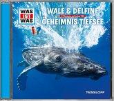 Wale & Delfine / Geheimnisse der Tiefsee, 1 Audio-CD