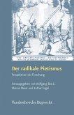 Der radikale Pietismus (eBook, PDF)