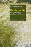 Die Bibel spricht (eBook, PDF)