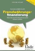 Fremdwährungsfinanzierung (eBook, PDF)