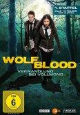 Wolfblood: Verwandlung bei Vollmond - 1. Staffel DVD-Box