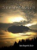 Seelentausch (eBook, ePUB)