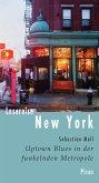 Lesereise New York (eBook, ePUB)