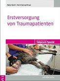 Erstversorgung von Traumapatienten (eBook, PDF)