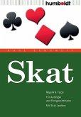 Skat (eBook, PDF)