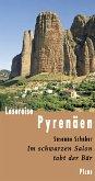 Lesereise Pyrenäen (eBook, ePUB)