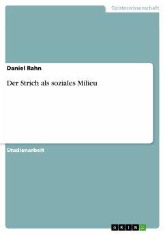 Der Strich als soziales Milieu (eBook, PDF)