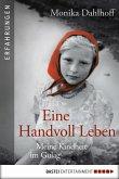 Eine Handvoll Leben (eBook, ePUB)