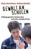 Gewalt an Schulen (eBook, PDF)