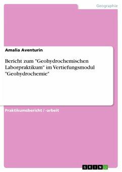"""Bericht zum """"Geohydrochemischen Laborpraktikum"""" im Vertiefungsmodul """"Geohydrochemie"""" (eBook, PDF)"""
