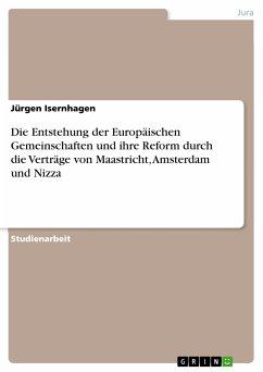 Die Entstehung der Europäischen Gemeinschaften und ihre Reform durch die Verträge von Maastricht, Amsterdam und Nizza (eBook, PDF)