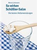 So wirken Schüßler-Salze (eBook, ePUB)