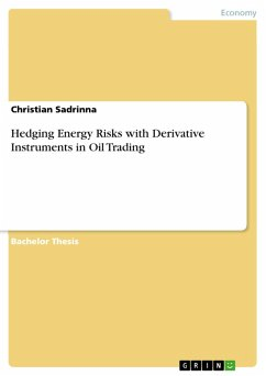 Hedging Energy Risks with Derivative Instruments in Oil Trading (eBook, PDF)