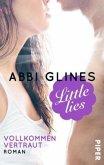 Little Lies - Vollkommen vertraut / Vincent Boys Bd.2