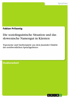 Die soziolinguistische Situation und das slowenische Namengut in Kärnten (eBook, PDF)