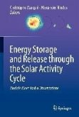 Energy Storage and Release through the Solar Activity Cycle (eBook, PDF)