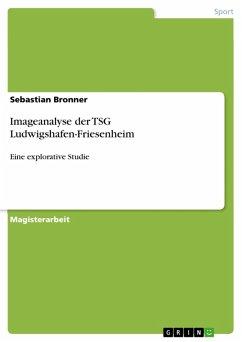 Imageanalyse der TSG Ludwigshafen-Friesenheim (eBook, PDF)