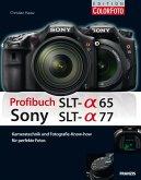 Profibuch Sony SLT Alpha 65 und Alpha 77 (eBook, PDF)