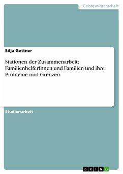 Stationen der Zusammenarbeit: FamilienhelferInnen und Familien und ihre Probleme und Grenzen (eBook, PDF)