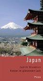 Reportage Japan. Kratzer im glänzenden Lack (eBook, ePUB)