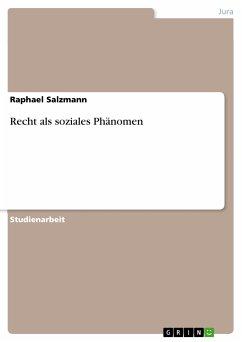 Recht als soziales Phänomen (eBook, PDF)