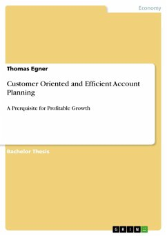 Customer Oriented and Efficient Account Planning (eBook, PDF)