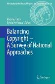 Balancing Copyright - A Survey of National Approaches (eBook, PDF)
