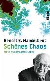 Schönes Chaos (eBook, ePUB)