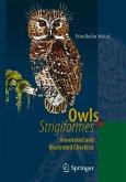 Owls (Strigiformes) (eBook, PDF)