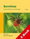 Borreliose (eBook, PDF)
