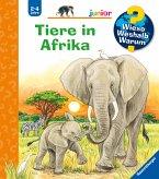 Tiere in Afrika / Wieso? Weshalb? Warum? Junior Bd.50