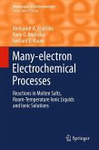 Many-electron Electrochemical Processes (eBook, PDF)
