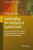Automating the Analysis of Spatial Grids (eBook, PDF)