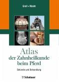 Atlas der Zahnheilkunde beim Pferd (eBook, PDF)