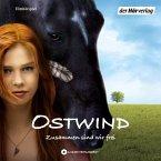 Zusammen sind wir frei / Ostwind Bd.1 (MP3-Download)