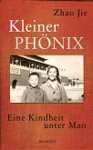 Kleiner Phönix (eBook, ePUB)
