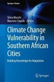 Climate Change Vulnerability in Southern African Cities